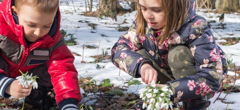Schneeglöckchen Suche mit Kindern