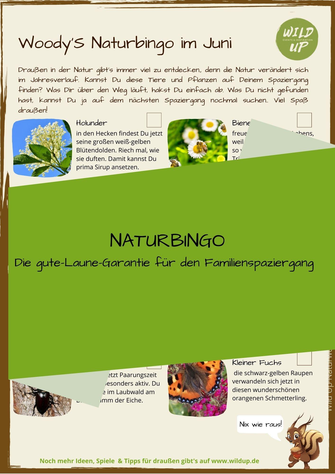 Natur spielerisch entdecken im Juni