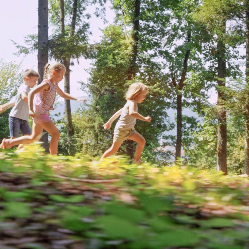 Spielplatz Wald entdecken mit Kindern