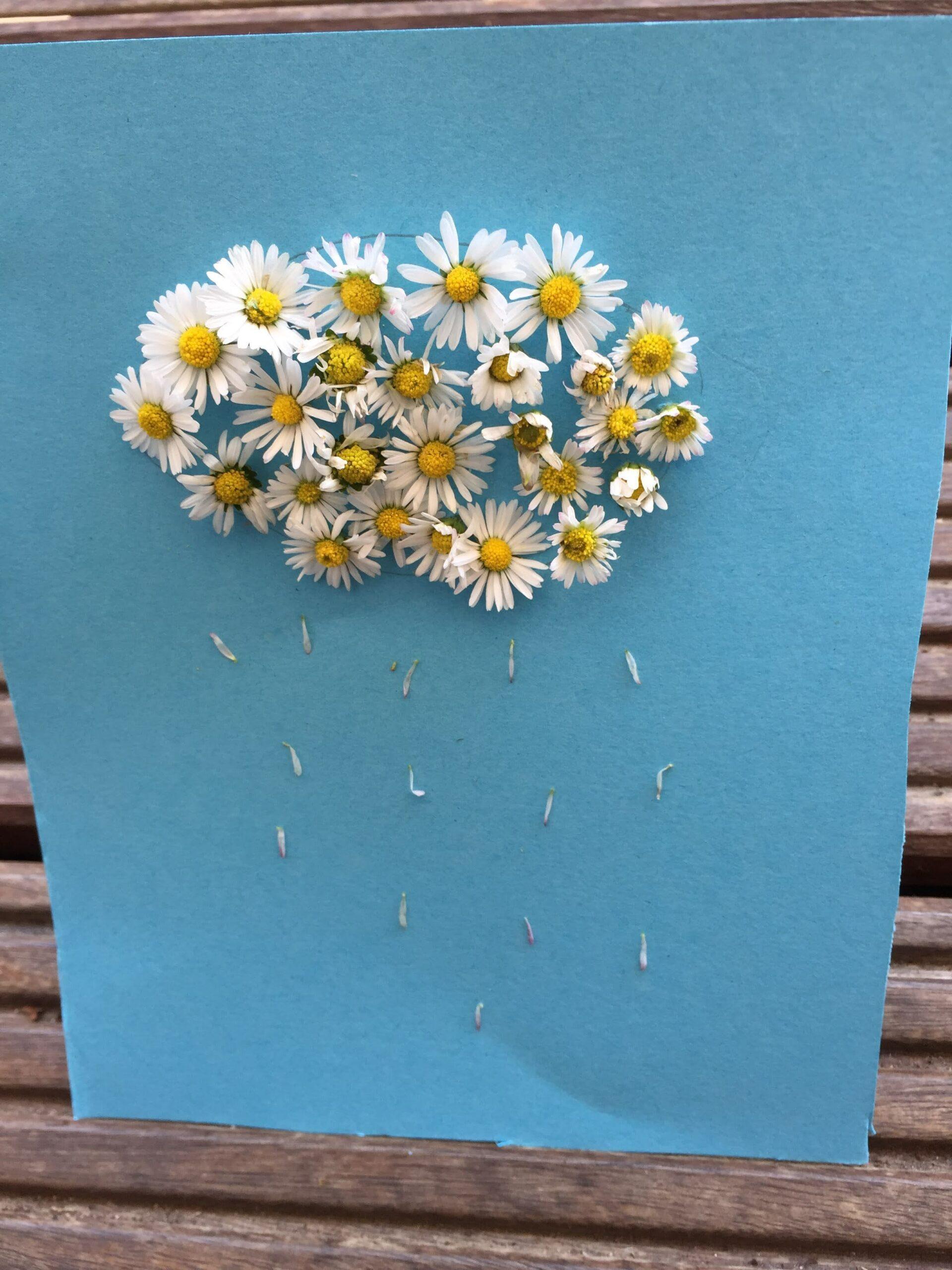 Kreatividee mit Gänseblümchen