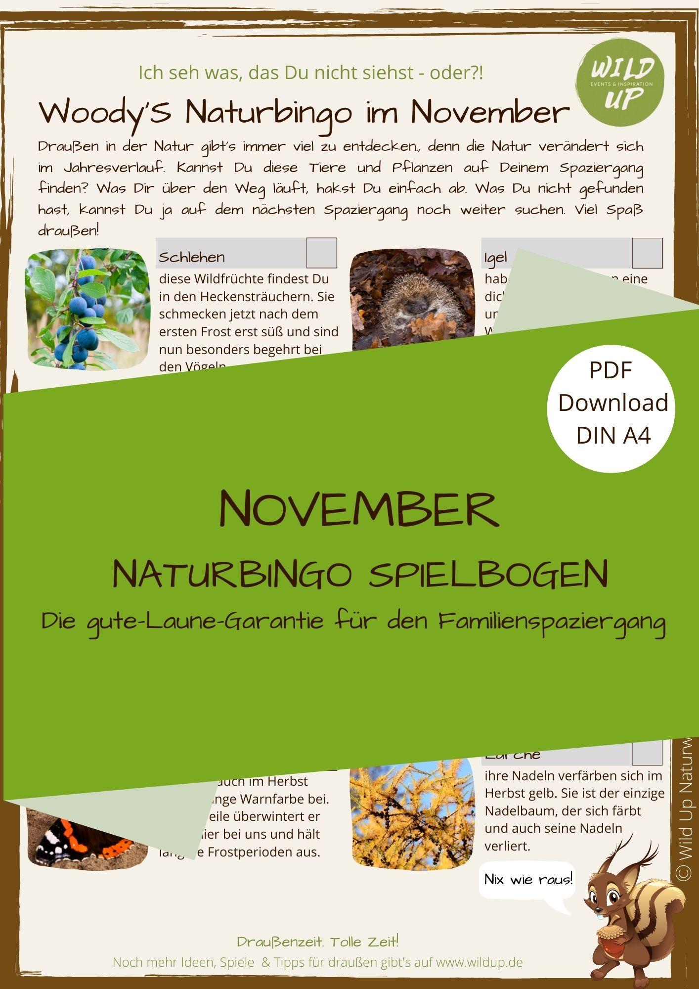 Naturbingo Suchspiel im November für Familien